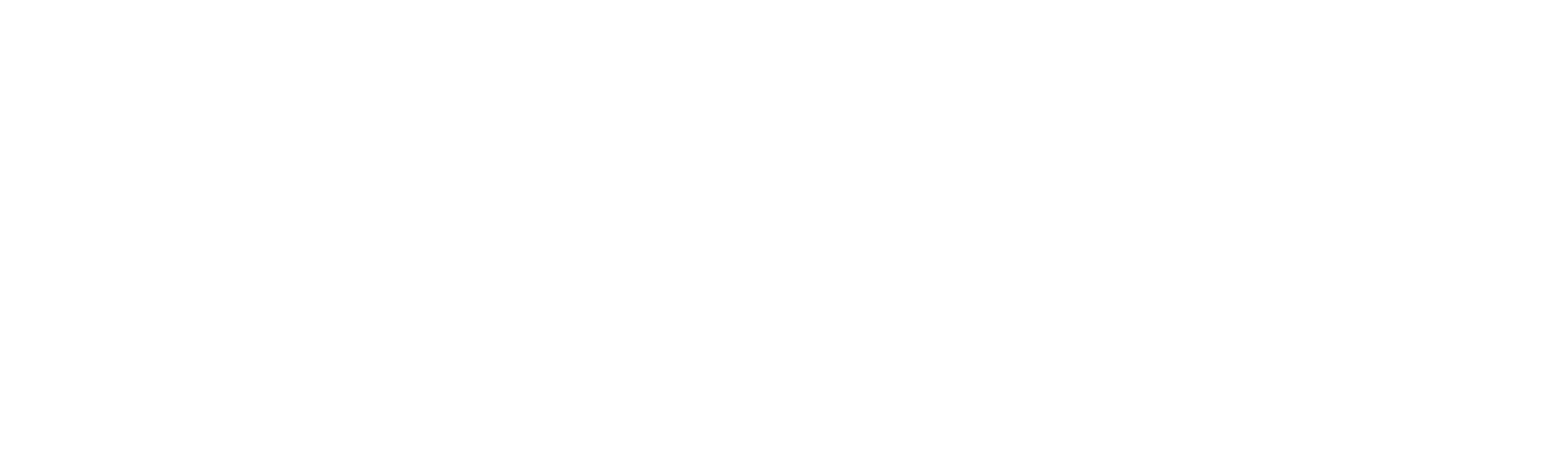 Weißes Logo der SAVISCON GmbH